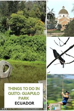 Things to do in Quito: Guapulo Park - Visit Ecuador and South America Ecuador, Stuff To Do, Things To Do, South America, Latin America, Spanish Speaking Countries, Just Dream, Galapagos Islands, Quites