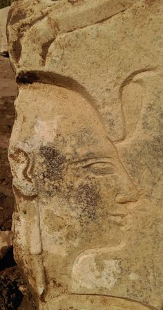Relief of Ramses II [Credit: Ministry of Antiquities] Dr. Aymen Ashmawi, the co-director of the mission, said that the recent find was part of the decoration of the innermost rooms of the temple. Further groups of relief fragments attest that Ramses II was the builder of this temple.