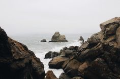 eartheld:  n-c-x:  dreamanddiscover:  Lands End August 2014  nature blog  mostly nature