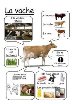 Vache - Animaux de la ferme animals silly animals animal mashups animal printables majestic animals animals and pets funny hilarious animal French Teacher, Teaching French, French Education, Kids Education, How To Speak French, Learn French, Animals For Kids, Farm Animals, Nature Animals