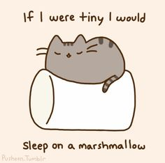 Pusheen Cat - I would too :)