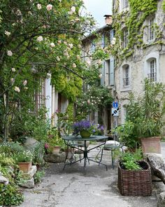 The sweetest little spot, in Saignon, France. You might recall that I showed photos of this darling courtyard last fall. I've also shared a peek at this spot on my IG stories today :) by frenchlarkspur French Courtyard, Courtyard Design, Garden Design, Design Cour, Garden Cottage, Garden Living, Provence France, Provence Garden, Garden Inspiration