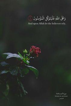 New Inspirational Quotes BakhtawerBokhari Quran Quotes Love, Quran Quotes Inspirational, Allah Quotes, Muslim Quotes, Religious Quotes, Arabic Quotes, Wisdom Quotes, Quran Sayings, Inspiring Quotes