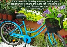 Good Morning Sunday Wishes Images Download - Good Morning Images, Quotes, Wishes, Messages, greetings & eCards Sunday Wishes Images, Good Morning Monday Images, Morning Pictures, Happy Sunday Flowers, Wishes Messages, Good Night Quotes, Best Quotes, Ecards, Inspirational Quotes