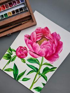 Watercolor peony by Studio Sonate Watercolor Peony, Peonies, Studio, Prints, Etsy, Vintage, Instagram, Design