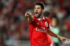 "Pizzi diz que Benfica precisa de usar a ""cabeça"" frente ao Fenerbahçe Benfica Wallpaper, Football, Adidas, Football Memes, About Football, Princesses, Soccer, Futbol, American Football"