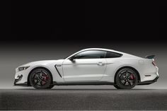 2016 Mustang Shelby GT350R Mustang http://palmcoastford.com/Flagler-and-Volusia-Counties/Dealer/New/Ford/