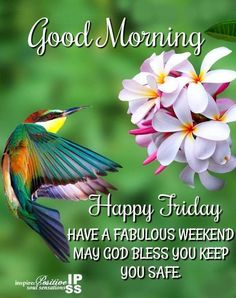 Blessed Morning Quotes, Friday Morning Quotes, Good Friday Quotes Jesus, Love Good Morning Quotes, Good Morning Happy Friday, Morning Quotes For Friends, Happy Friday Quotes, Afternoon Quotes, Blessed Friday