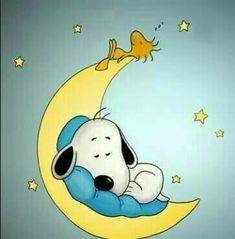 Night night Snoopy and Woodstock! Night night Snoopy and Woodstock!
