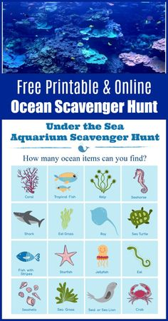 FREE printable Under the Sea ocean scavenger hunt for kids - can be done as a virtual scavenger hunt using live webcams or take it to an aquarium for an in-person hunt! Ocean Activities, Printable Activities For Kids, Summer Activities For Kids, Worksheets For Kids, Literacy Activities, Free Printables, Book Scavenger Hunt, Ocean Habitat, Sea Aquarium