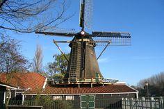 Kinderboerderij De Buiktuin Amsterdam - Pesquisa Google