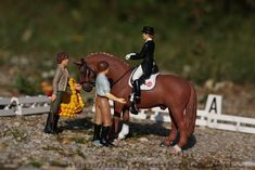 dressage by Schokolein.deviantart.com on @DeviantArt