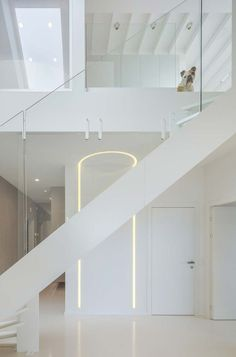 A modern white staircase connects the two levels. Tagged: Staircase, Metal Tread, and Glass Railing. Photo 6 of 14 in This Bright, White Duplex in Lithuania Showcases Art With Amazing Views. Browse inspirational photos of modern staircases. White Staircase, Modern Staircase, Staircase Design, Staircase Ideas, Hallway Designs, Glass Railing, Duplex, European House, Smart Design