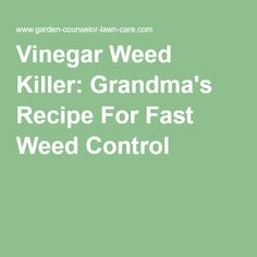 Vinegar Weed Killer: Grandma's Recipe For Fast Weed Control
