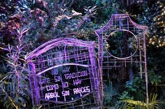 Memories of the Garden is an outdoor sculpture intervention in the oldest botanical garden in Europe. Curated by internationally known art historian and critic Barbara Rose.