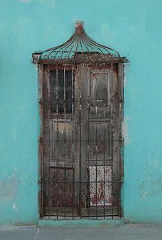 Birdcage Door