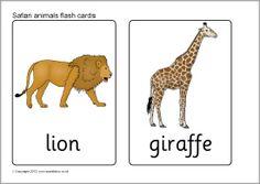 Safari animal flash cards (SB7723) - SparkleBox