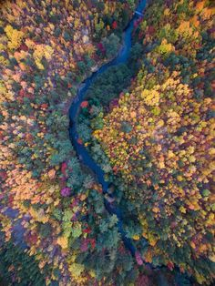 Fall colors line the banks and forest surrounding Katahdin Stream in baxter State Park Maine. [OC] [2881  3844] #reddit