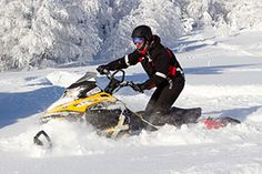 Looking for winter fun options? We have some suggestions...http://thayersinn.com/white-mountain-attractions/winter-activities-near-littleton-nh/