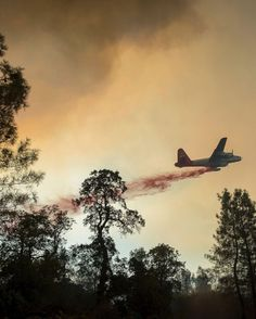 A plane drops retardant while battling a wildfire near Oroville, California, on Saturday 8 July 2017. The fire south of Oroville, this is…