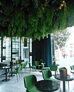 'Le café de l'hôtel Marquis Issobel's'. J'adore le plafond végétal.... même si les plantes sont fausses...mais l'ambiance est belle et me rappelle la Suède ! . . ******* . . A new kid in town. The café of Marques Issobel's hôtel. Big crush on the vegetal ceiling....even if the plants are fake...dommage....but the ambiance is great and reminds me of Sweden! . . . #mycastleinspain #granada #ilovecafes #coolplaces #greenspace #interiors #inredning #design #scandi...