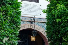 #Córdoba siempre se ha caracterizado por ser una ciudad-musa. Inspiración de decenas de artistas que nos dejan un gran legado en pinturas, esculturas y, por su puesto, arquitectura.  Prueba de ello es el Museo de Bellas Artes de Córdoba, ubicado en la #PlazaDelPotro, lugar emblemático de la ciudad. Allí se recogen multitud de obras que reflejan el #arte desde el siglo XVI hasta nuestros días. ¡Una manera distinta de descubrir toda la historia de nuestra ciudad! 👉…