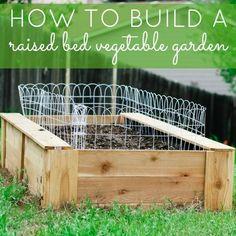 DIY Build A Raised Bed Vegetable Garden - DIY Garden