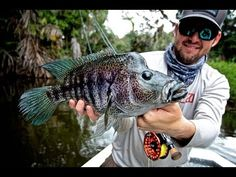 Video: Fly Fishing for Rainbow Bass in the Jungles of Nicaragua Gone Fishing, Bass Fishing, Fishing Places, Pond Life, Fishing Adventure, Fishing Quotes, Get Outside, Wyoming, Kayaking