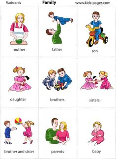 members of the family flashcards