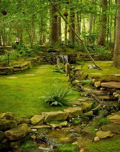 Emerald green woods moss