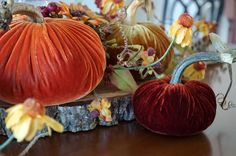 LoveFeast Shop Velvet Pumpkins Fall Sunset Trio  Great for fall tablescaping!