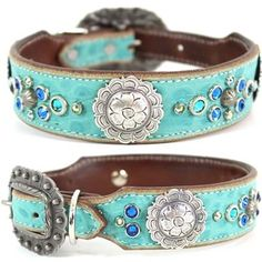 A turquoise Western leather dog collar with alligator embossing, studs and Swarovski Crystal bling. For medium to large dogs.