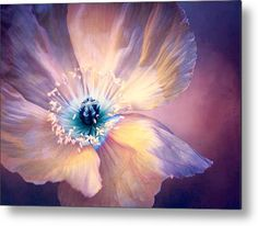Poppy In Purples metal print by Terry Davis.   Bring your artwork to life with the stylish lines and added depth of a metal print. Nice Wall Art for your Home Decor.
