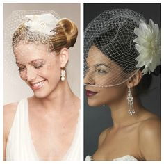 Cage Veils: Neat idea for a wedding someday. Helps that I found these images and wrote this blog... Hehe.