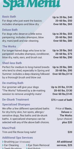 Dog Grooming Styles, Dog Grooming Shop, Dog Grooming Salons, Dog Grooming Business, Puppy Room, Dog Spa, Kennel Ideas, Dog Salon, Dog Wash
