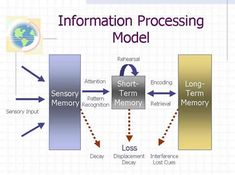 information processing theory -