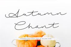 DLOLLEYS HELP: Autumn Chant Free Font