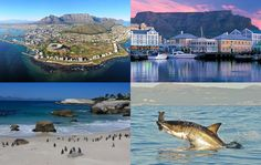 If you need a taxi/cab in Cape Town call or sms 0847309467 now. Our cabs are on call 24/7 for your convenience