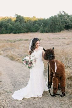 Golden Hour Southern California Wedding with Cambodian Influence – Carrie McGuire Photography 30