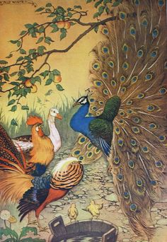 Vintage Aesop's Fables 1919 Childrens Illustration- The Peacock.  via Etsy.