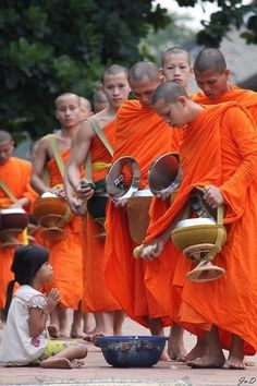 monks and morning alms in Thailand