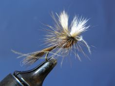 CDC & Quill Parawulff Fly Tying Tutorial