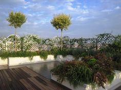 foto terrazzi - Cerca con Google