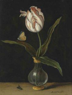 Балтазар ван дер Аст. Натюрморт с тюльпаном