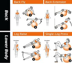 Exercise Ball Poster – Total Body Workout – Your Personal Trainer Fitness Program for Women – Swiss, Yoga, Balance & Stability Ball Home Gym Poster – Tone ...