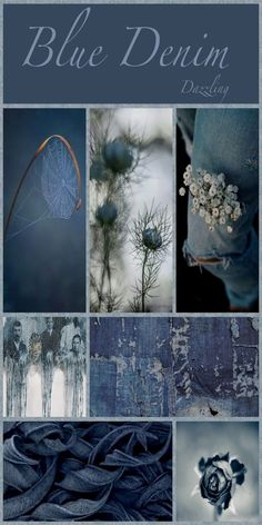 Love all shades of blue. Colour Schemes, Color Trends, Color Combos, Color Patterns, Pattern Ideas, Pattern Designs, Print Patterns, Mood Colors, Colours