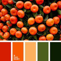 апельсиновый, зеленый, красный, мандариновый цвет, оливковый, оранжевый, оттенки зеленого, подбор цвета в интерьере, тёмно-зелёный, яркий оранжевый.