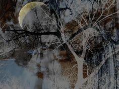 'Magischer Wald - magic Forest' von Chris Berger bei artflakes.com als Poster oder Kunstdruck $20.79