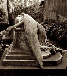 Roma, Cimitero degli Inglesi - 2005
