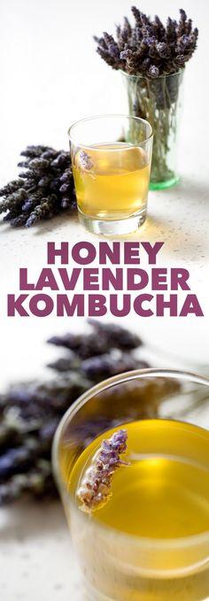 This Honey Lavender Kombucha recipe is perfect for the kombucha tea-making beginner. It has a very light and refreshing taste along with an easy method for adding flavor. Kombucha Tee, Jun Kombucha, Kombucha Brewing, Homebrewing, Paleo Recipes, Whole Food Recipes, Delicious Recipes, Easy Recipes, Kombucha Flavors